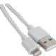 Cordon Apple Lightning vers USB 0,5 m